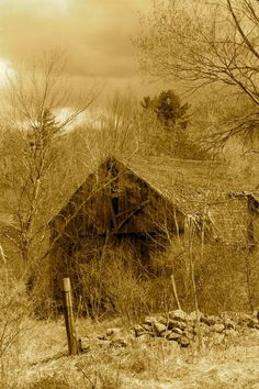 Totally Forgotten Barn.........  Growing up in Southern rural farming community, I can remember seeing many scenes like this.