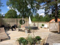 uteplats,altan,terass,olivträd,spabad