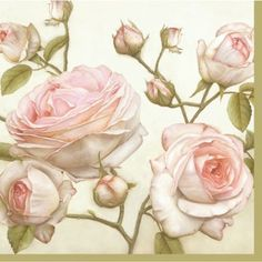 20 Paper Napkins BEAUTY ROSES - SHABBY CHIC DECOUPAGE VINTAGE - WHITE Roses #PAW