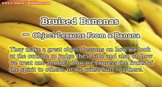 Bananas are enjoyed all around the world. They are full of goodness, but they are easily bruised and can quickly turn to mush. Like many fruits, they can be extremely sweet and a delight. But they can also be easily bruised and turn rotten. They make a great object lessons on how we look at…