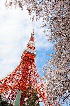 Tokyo ( Tokyo Tower ), Japan