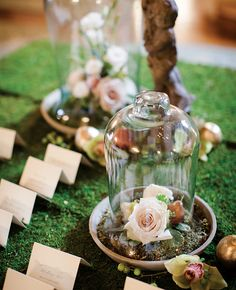 Bell jar (but with white flowers or greenery, no roses). Love that it's on a moss bed with the escort cards.