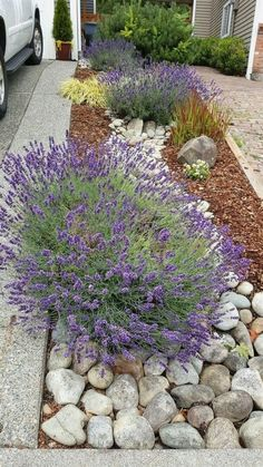 Beauty Front Yard Rock Garden Landscaping Ideas - Page 20 of 74 River rock landscape and lavender bush / … - Landscaping Design Simple Front Yard Landscaping Ideas on A Budget 2018 What could be better than Lavender and River Rock? Lavender loves hot we Garden Design, Garden Landscape Design, Cottage Garden, Front Yard Landscaping, Small Backyard Landscaping, Urban Garden, Backyard Garden, Outdoor Gardens, Rock Garden Landscaping