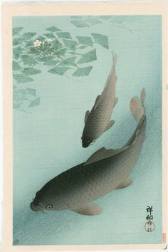 Artist: Ohara Koson Title: Two Carp Near Water Grass Date: 1926 Medium: Japanese Woodblock Print Size: x inches Published by Watanabe, Heisei edition from the original blocks Japanese Art Prints, Japanese Drawings, Woodblock Print, Grass Carp, Ohara Koson, Koi Carp, Vintage Japanese, Japanese Style, Painting
