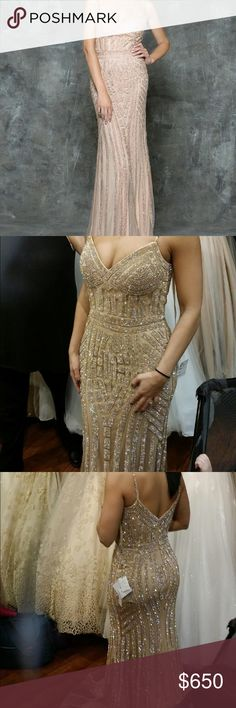 Evening gown/prom dress Brand new, never worn size 2. The dress is covered in gold crystal from top to bottom. Absolutely beautiful! Dresses Prom