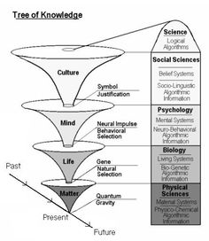 Tree of Knowledge System - Psychology Wiki artificial intelligence father Philosophy Theories, Philosophy Of Mind, Philosophy Of Science, Philosophy Quotes, Systems Thinking, Matter Science, Knowledge Management, Change Management, Critical Thinking Skills