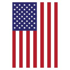 Toland Home Garden USA Flag - 111266