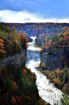 """100 Gorgeous Photos Of Fall Leaves Grand Canyon of the East"""", the """"Glen Iris"""" or more commonly known as Letchworth State Park in Upstate New York"""