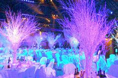 Winter Wonderland Wedding Venue Decor & dressing…