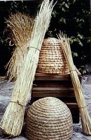 article: medieval beekeeping during viking era, essential for the production of mead. Vikings Live, Norse Vikings, Viking House, Viking Age, Viking Food, Bee Skep, Viking Dress, Medieval Life, Anglo Saxon