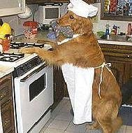 if U want anything done right U have to do it yourself Homemade dog food by a dog