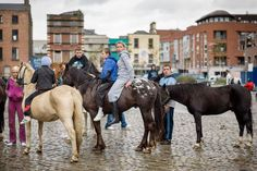 Smithfield horse market -Dublin held on the Sunday of every month James Horan, Dublin, Photo Credit, Hold On, Creatures, Horses, History, Thesis, Gypsy