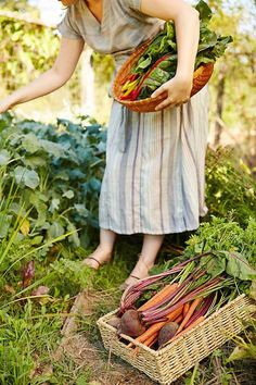 An organic garden is a fascinating thing that also requires a lot of time and attentive care to thrive. That is why wise organic gardening comes in handy.This will see you grow tastier and better tasting results from your organic… Continue Reading → Organic Gardening, Gardening Tips, Ed Wallpaper, Female Farmer, Edible Garden, Eco Garden, Garden Kids, Garden Modern, Garden Cottage