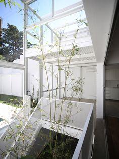 Casa Fernandez by Adamo Faiden