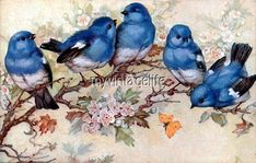 Five Blue Bird on Blossom Tree - Embroidery design - Cross stitch pattern- Counted cross stitch pattern in PDF format - Cross stitch patterns Bluebird Vintage, Vintage Birds, Vintage Pictures, Vintage Images, Art And Illustration, Illustrations, Vintage Bird Illustration, Embroidery Designs, Intermediate Colors
