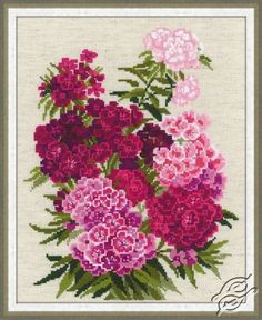 Sweet William - Cross Stitch Kits by RIOLIS - 1463