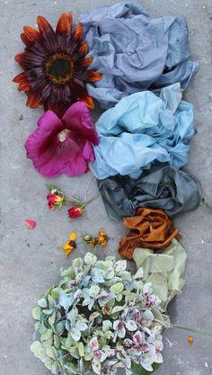 Late summer flower natural dye palette.