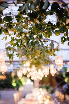 A Classic Fall Philadelphia Wedding at Fairmount Park Horticulture Center Nashville Wedding, New York Wedding, Fall Wedding, Philadelphia Wedding, Reception Decorations, Horticulture, Centerpieces, Centerpiece Ideas, Wedding Engagement