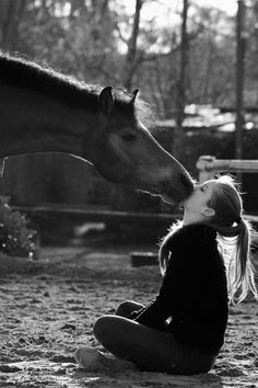 VISIT FOR MORE Good morning nuzzles! The post Good morning nuzzles! appeared first on Fotografie. Cute Horses, Pretty Horses, Horse Love, Beautiful Horses, Animals Beautiful, Horse Senior Pictures, Pictures With Horses, Horse Photos, Horse Girl Photography