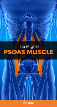 ll too often we find ourselves experiencing aches and pains in our bodies, especially in the low back. If you find yourself commonly searching for remedies for fast back pain relief, it may be time to investigate the psoas muscle.