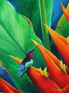 Choose your favorite heliconia paintings from millions of available designs. All heliconia paintings ship within 48 hours and include a money-back guarantee. Abstract Watercolor, Watercolor Paintings, Abstract Art, Art Paintings, Hummingbird Painting, Acrilic Paintings, Bird Artwork, Tropical Art, Tropical Plants