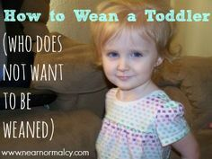 Near Normalcy: How to Wean a Toddler (who does not want to be weaned)  I may need this advice soon :)