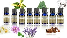 Essential Oils from Neals Yard Remedies. #nealsyard #essentialoils #aromatherapy