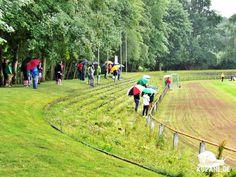 02.07.2016 Meeraner SV e.V. – FSV Zwickau e.V. http://www.kopane.de/02-07-2016-meeraner-sv-e-v-fsv-zwickau-e-v/  #Groundhopping #Fußball #fussball #football #soccer #kopana #calcio #fotbal #travel #aroundtheworld #Reiselust #grounds #footballgroundhopping #groundhopper #traveling #heutehiermorgenda #floodlights #Flutlicht #tribuneculture #stadium #thechickenbaltichronicles #DasWochenendesinnvollnutzen #EURO2016 #MeeranerSV #Meerane #FSVZwickau #Zwickau