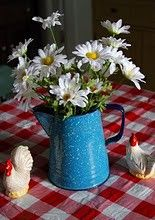 Love daisies and old coffee pots...