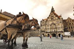 Dresden — Day 11 of the Rick Steves Best of Germany Tour