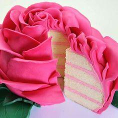 Rose Cake                                                       …