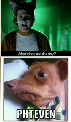 """""""What does the fox say?"""" ... """"Phteven"""""""