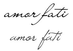 "amor fati - a Latin phrase coined by Nietzsche loosely translating to ""love of fate"" or ""love of one's fate"". It is used to describe an attitude in which one sees everything that happens in one's life, including suffering and loss, as good. Moreover, it is characterized by an acceptance of the events or situations that occur in one's life."