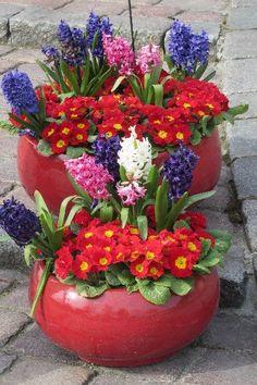 Wiosna na czerwono