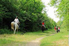 Randonnée à cheval dans le #Gers - #loisir