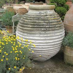 Beautiful large antique olive oil storage jar.        Height: 115cm,      Width: 110cm