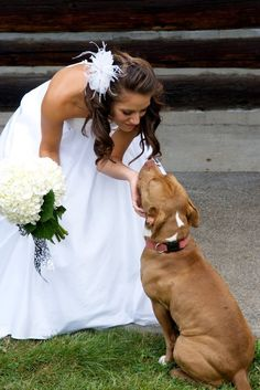 make sure your dog is in your wedding photos