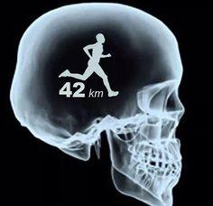 Running Matters #211: Marathon Mind
