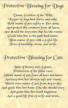 Dog / Cat Protective Blessing