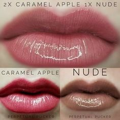 LipSense Color Combo to Try: Caramel Apple + Nude. Long lasting lipstick that is perfect on its own or layered! What combination will you create? Lips by Stephie 406510