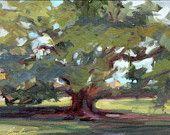 """New Orleans Landscape Painting, NOLA, City Park Oak, 9"""" x 12"""" , oil painting on artist canvas board"""