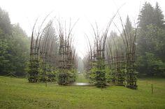 outdoor tree cathedral - Giuliano Mauri