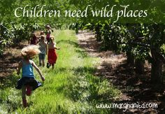 Unstructured Play : Wild and Free In Nature