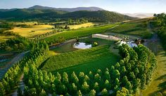 Yarra Valley, Victoria, Australia/had lunch at a winery here-very nice!