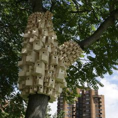 these bird and bug boxes have been installed by art and architecture collective London Fieldworks around trees across London