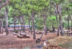 La Comunidad Valenciana está llena de merenderos y áreas recreativas en plena naturaleza. Lugares para poder disfrutar junto a la familia y/o amigos.