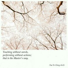 Lao Tzu Quotes, Wisdom Quotes, Samurai Quotes, Advaita Vedanta, Tao Te Ching, Haiku, Yoga Meditation, Buddhism, Writers