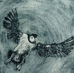 Louise Worthy 'Incoming Puffin' Drypoint