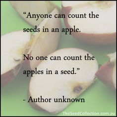 """Anyone can count the seeds in an apple.  No one can count the apples in a seed."""