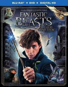 Fantastic Beasts and Where to Find Them Dual Audio Hindi